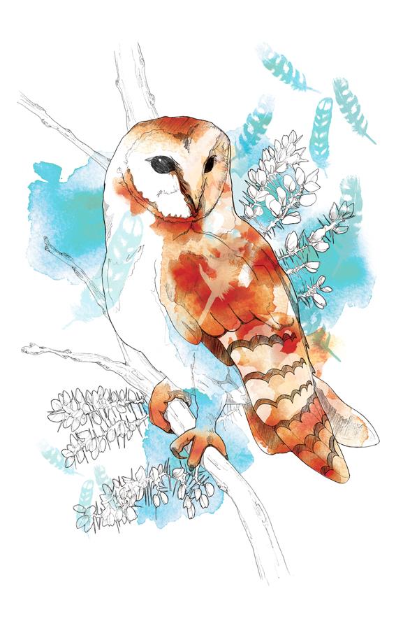 Floral Illustration | Packaging | Birds | Animals | Feminine | London based illustrator Willa Gebbie