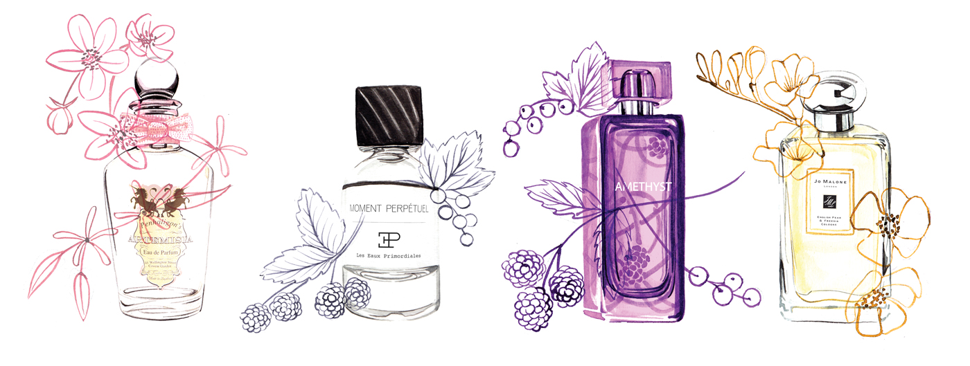 Watercolour perfume illustrations by Willa Gebbie