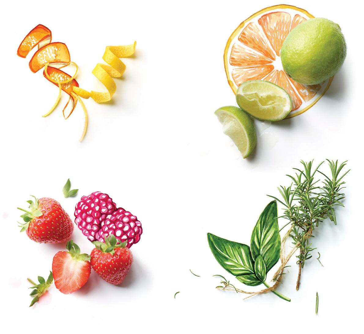 Food illustration photography collaboration for Waitrose