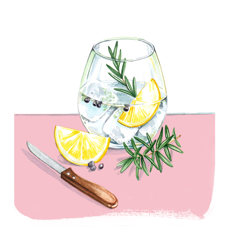 Gin and Tonic. Food and Drink illustrations by illustrator, Willa Gebbie