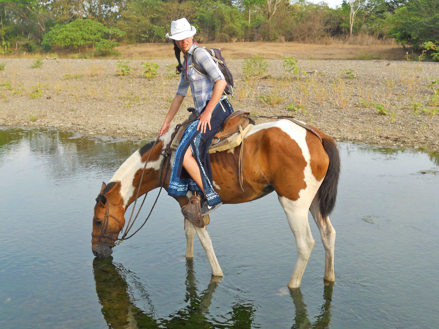 beautiful-nature-view-river-costa-rica-horse.jpg