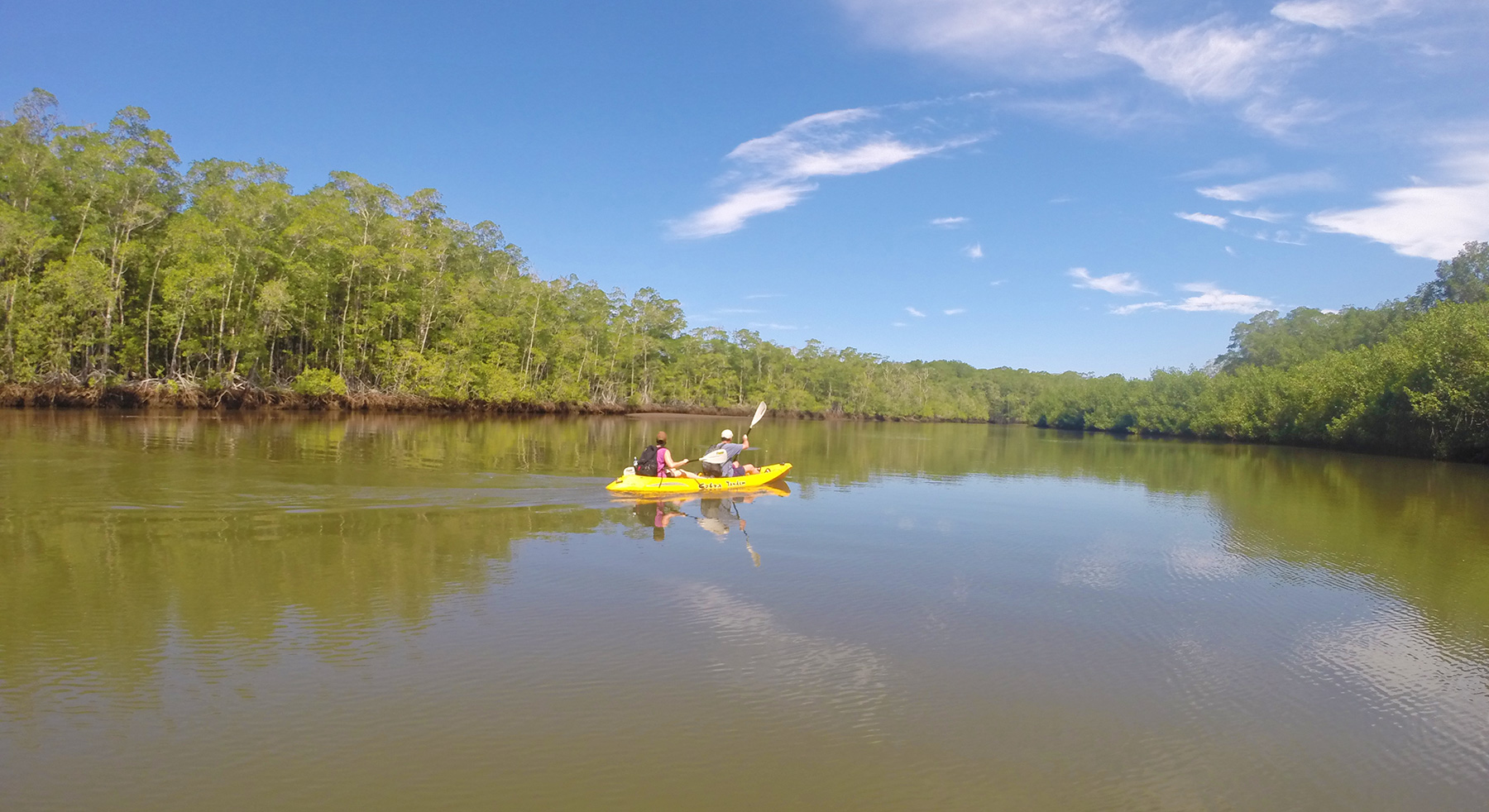 A gorgeous to day of kayaking along the Coyote mangroves.