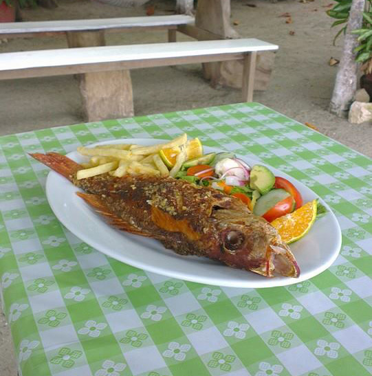 A typical Costa Rican dish with freshly caught Red Snapper.