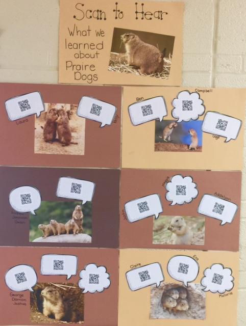 prairie dog facts.jpg