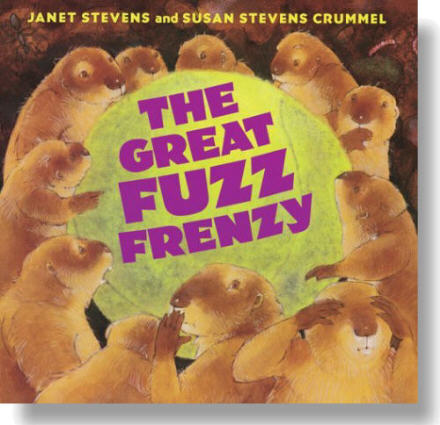fuzz cover with shading.jpg