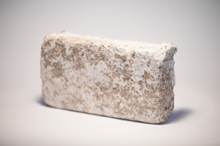officina-corpuscoli-thegrowinglab-brick-blur-720x480.jpg