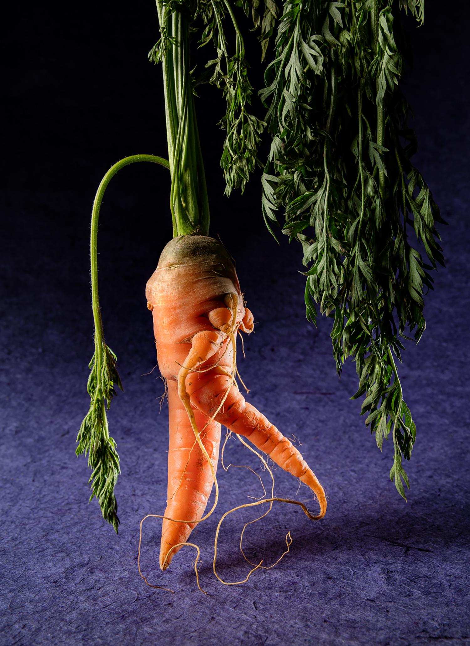 Meckler-ugly veggie-07.jpg
