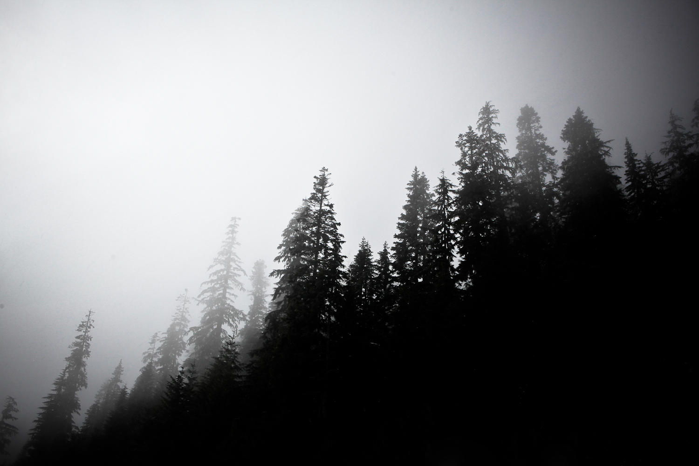 016_Landscapes__45_of_52_.jpg