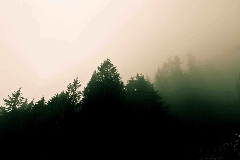 015_Landscapes__46_of_52_.jpg