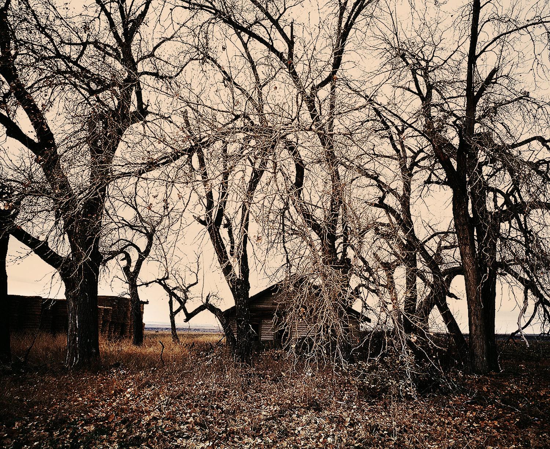 034_Landscapes-_26-of-52_web.jpg