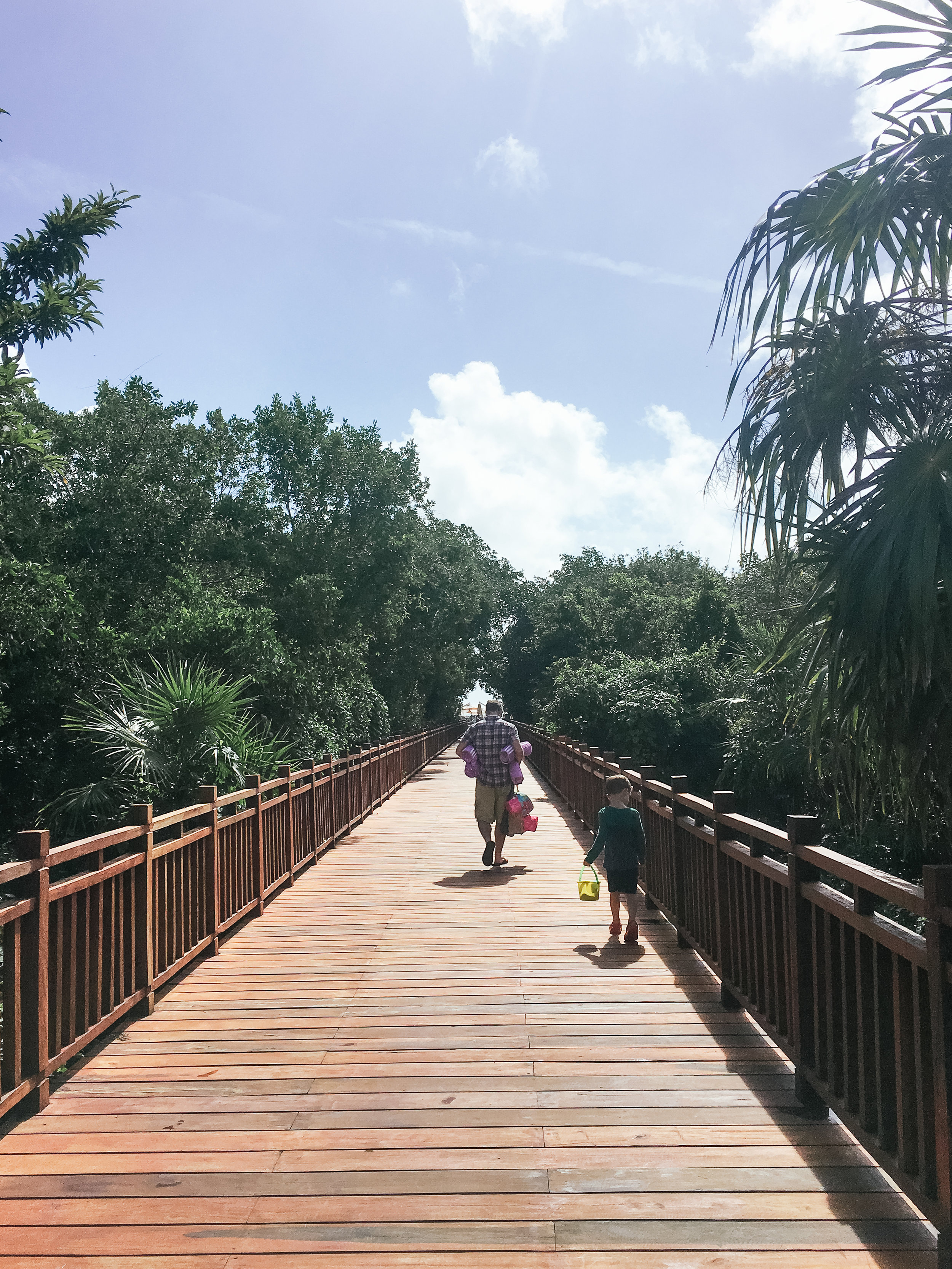 Heading to the beach on one of the many boardwalks that cut through the mangroves.