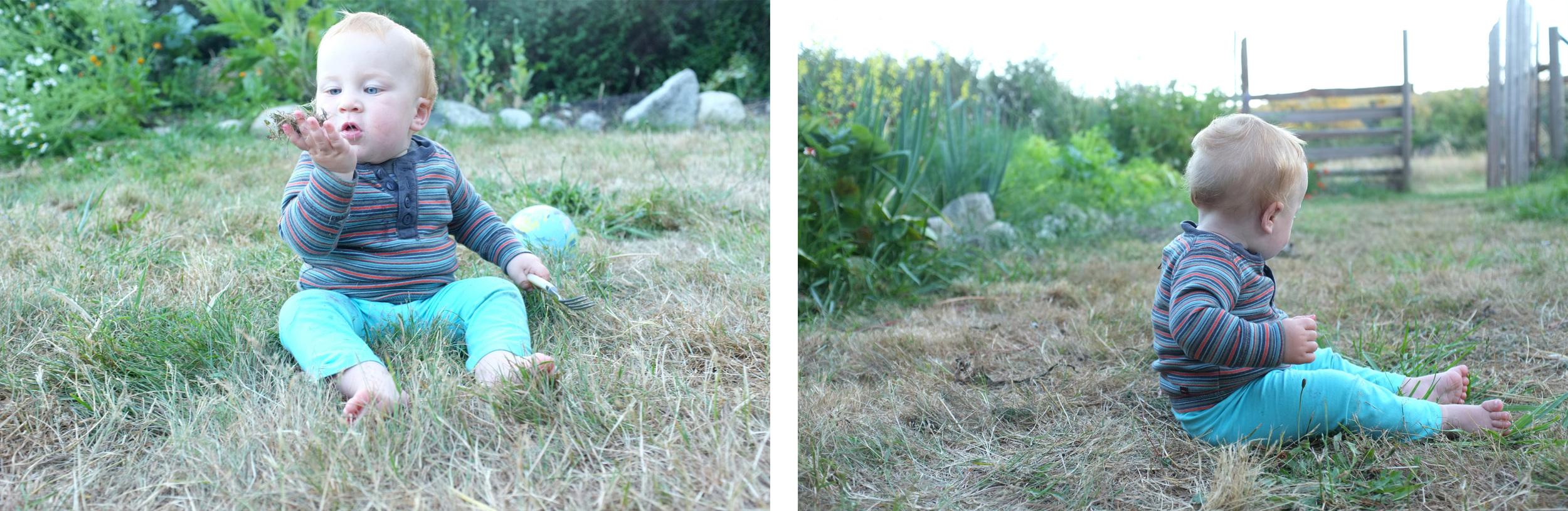 grass+owynn