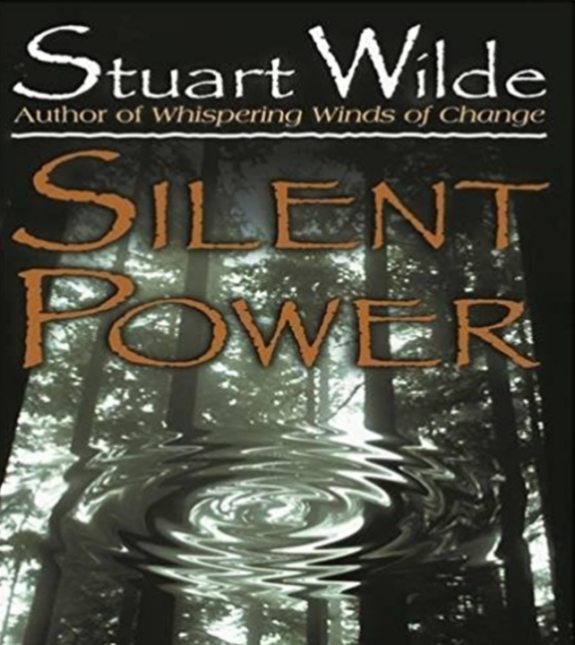 Silent Power by Stuart Wilde