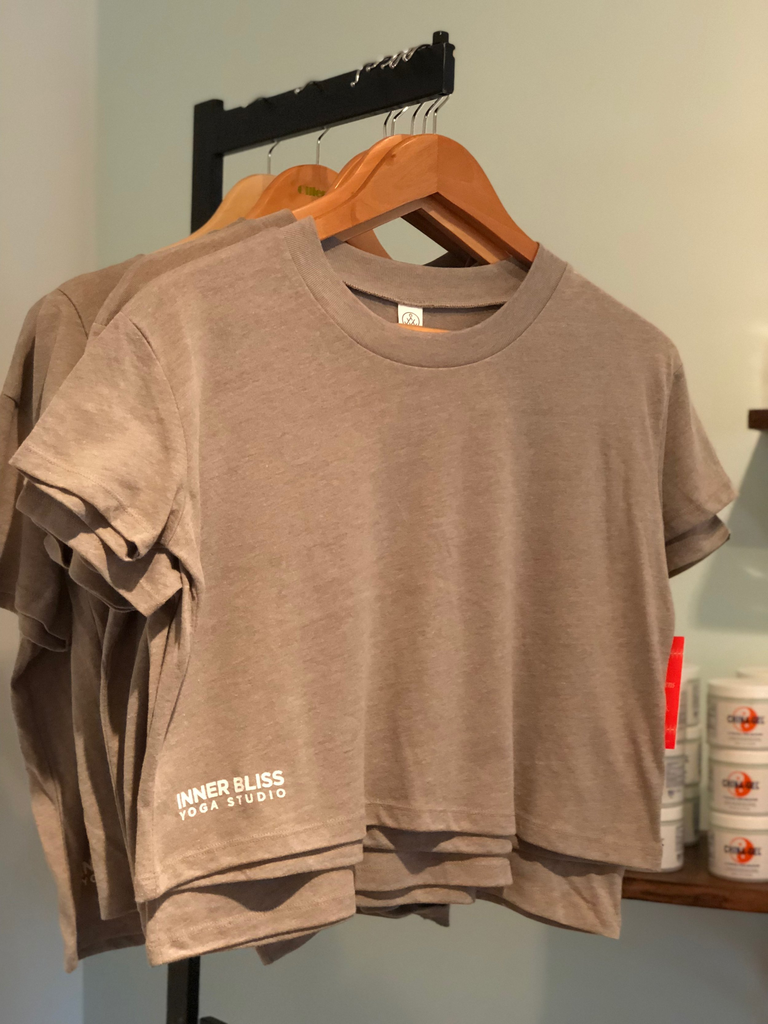 IBY Cropped T-Shirt in Smoke Grey $32