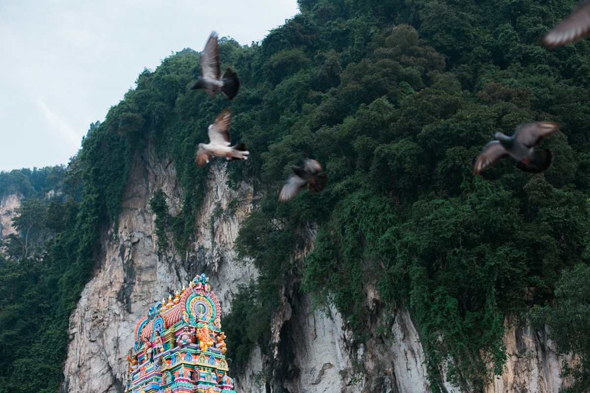 Birds fly over a temple at Batu Caves.