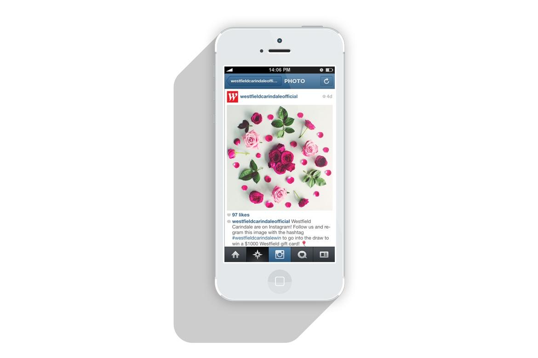 Photography_Floral_Styling_Digital_Design_Brisbane