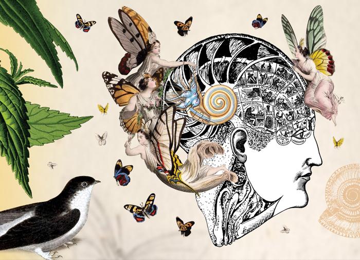 illustration08.jpg