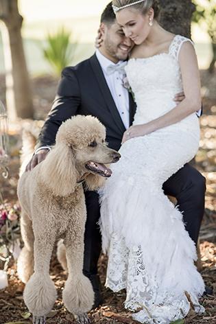 bespoke-bridal-designer-helena-couture-designs-custom-wedding-dresses-gold-coast-brisbane-affordable-dog-park.jpg