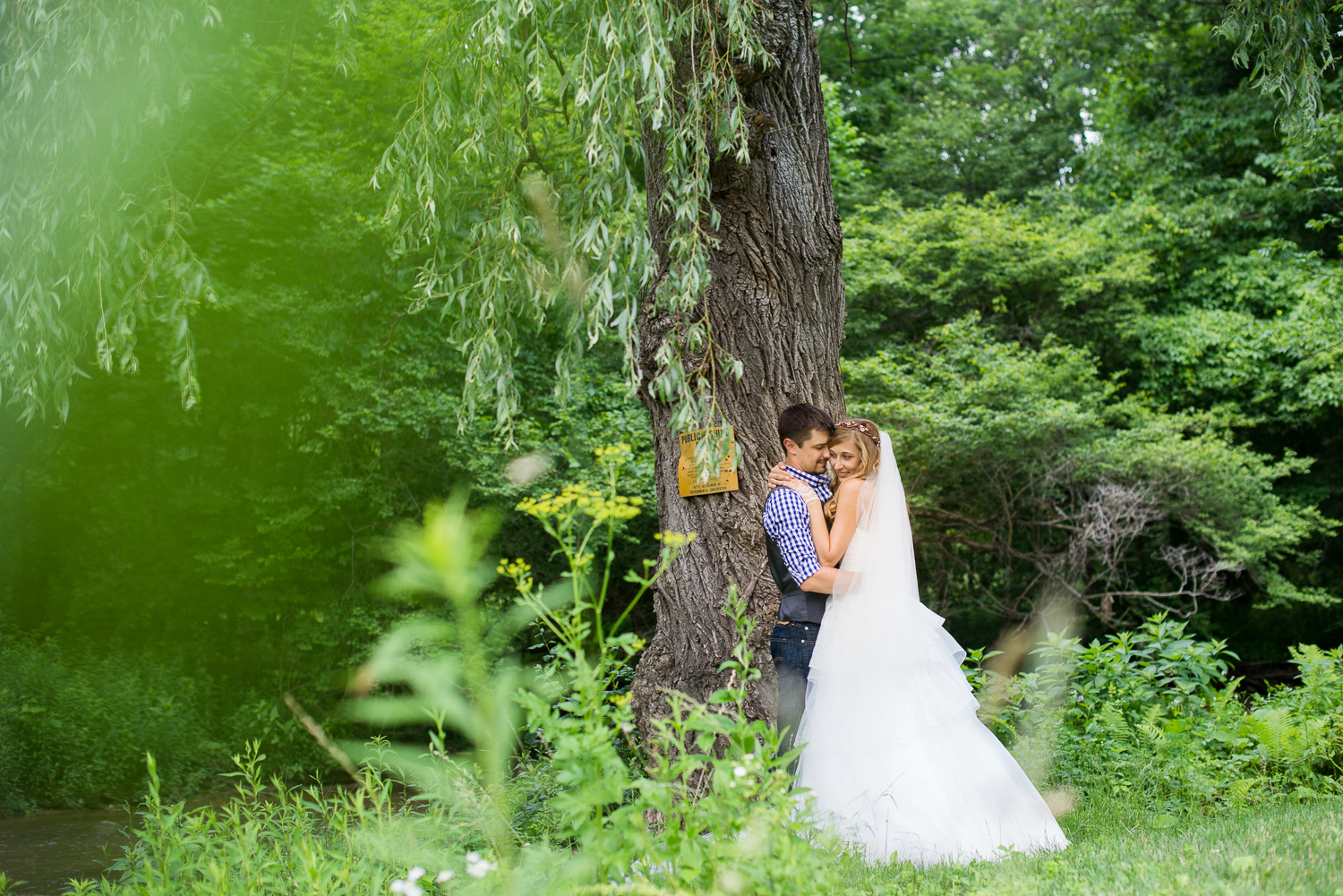 couple under willow