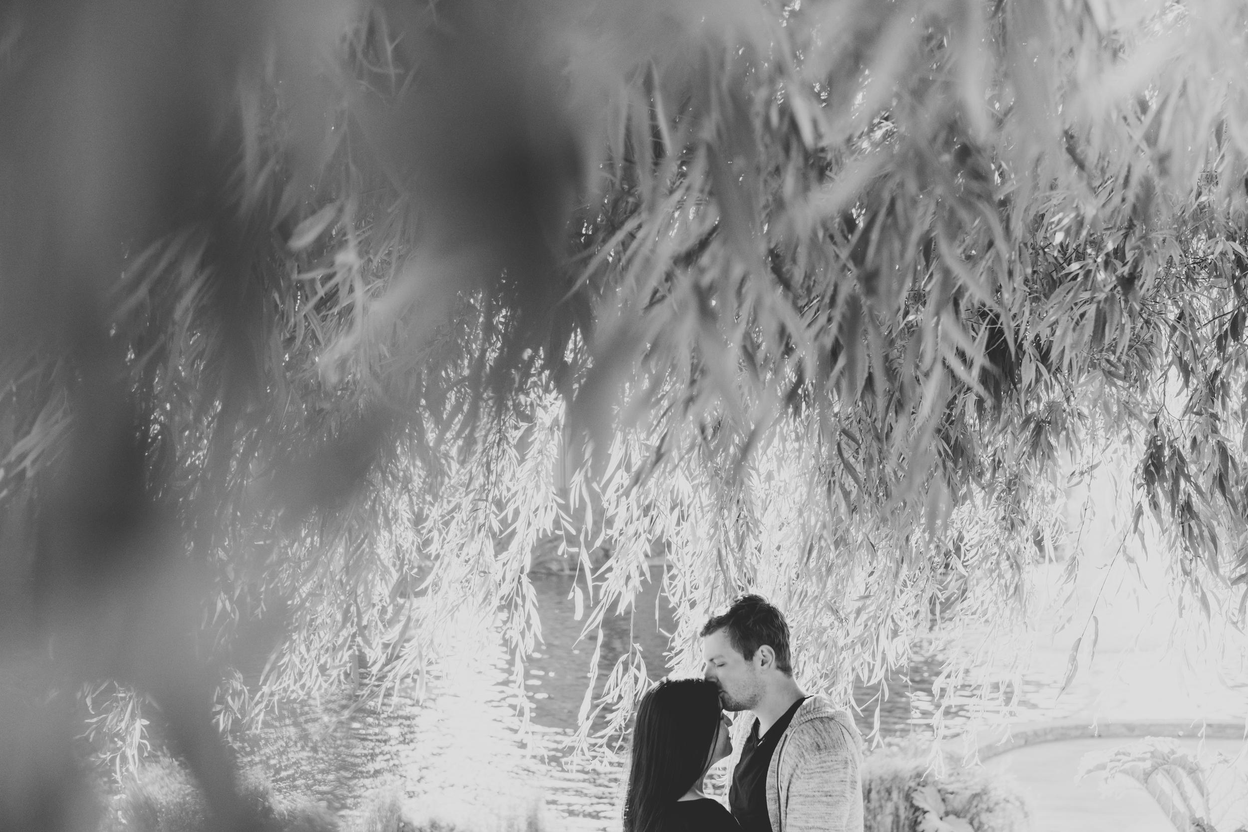 couple standing under tree