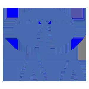 Tata Logo.png