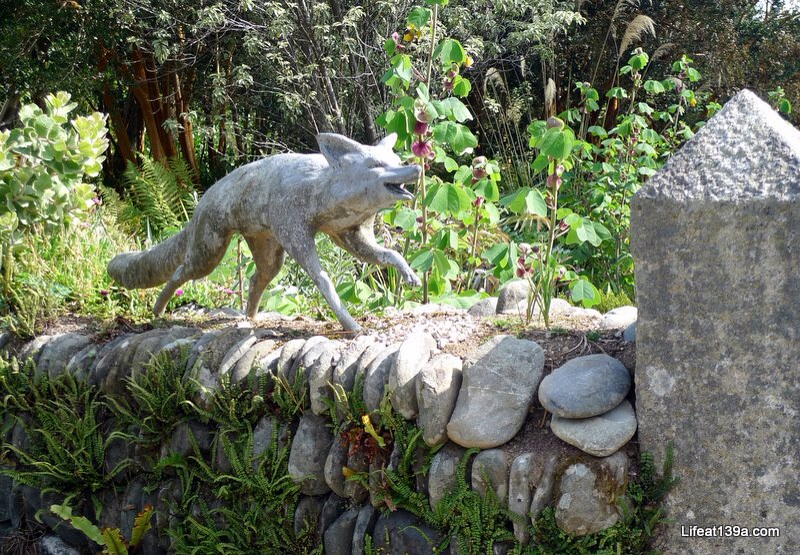 I wish the foxes in my garden were this static