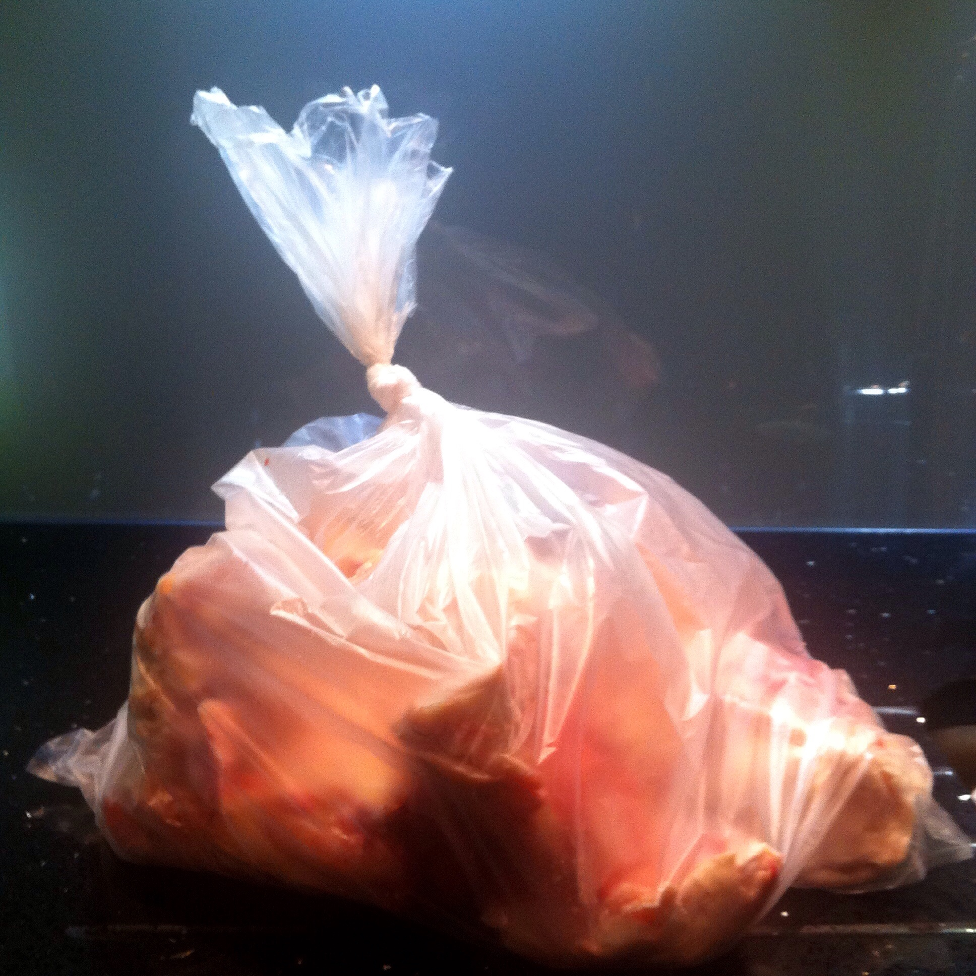 A large bag of bones