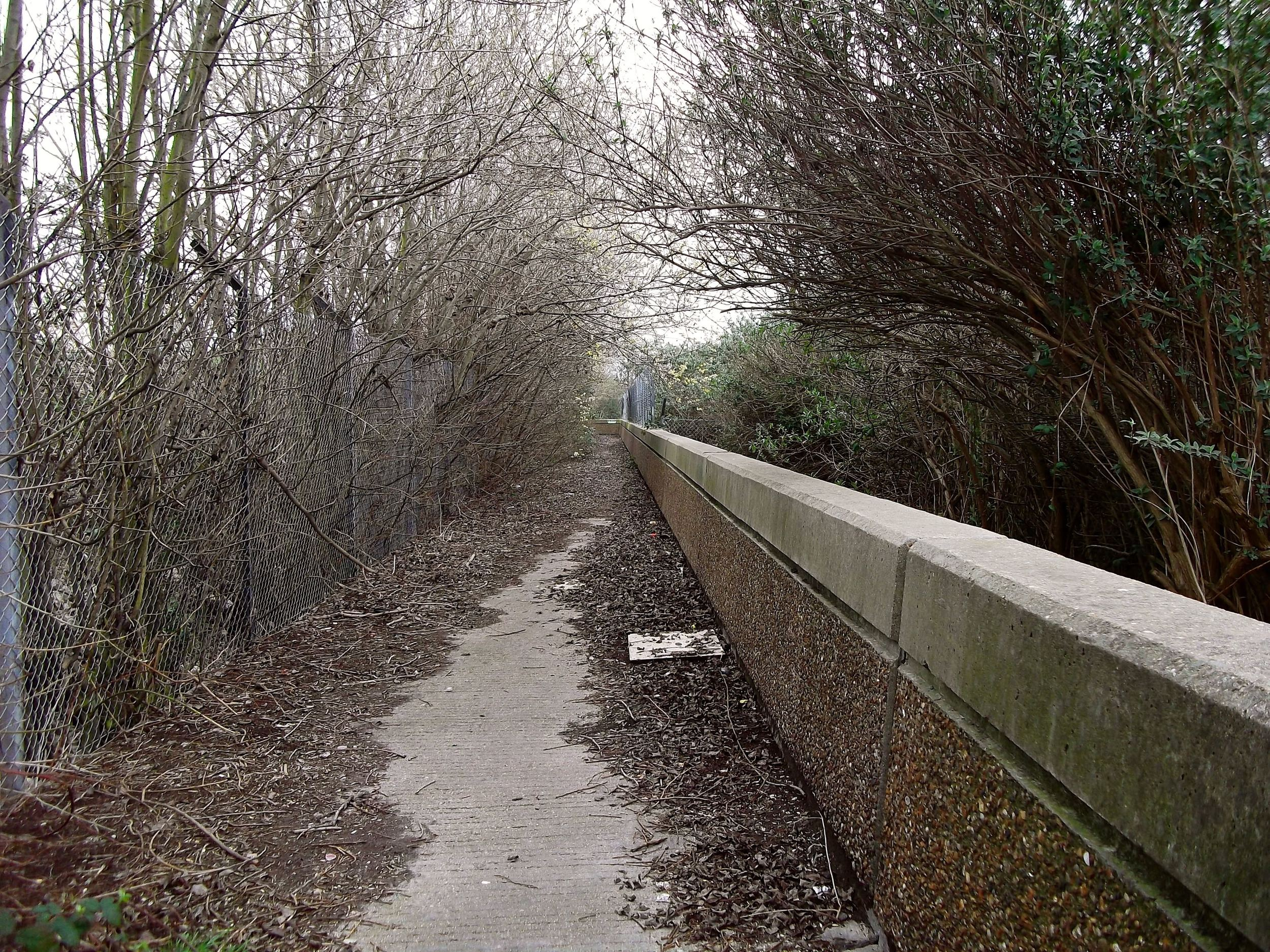 Albert Island thames path London Docklands.jpg