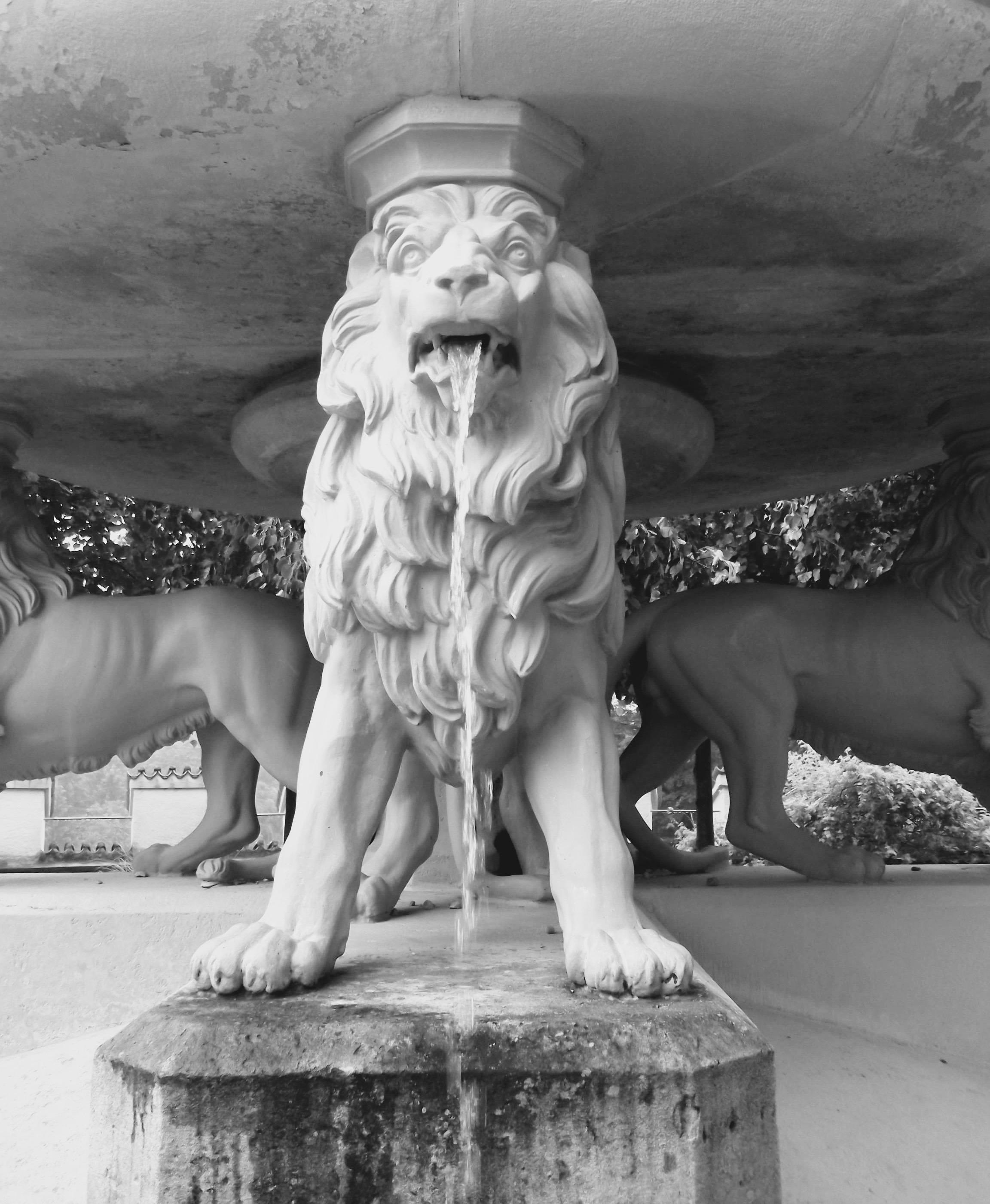 lionfountainhohenschwangaucastle.jpg