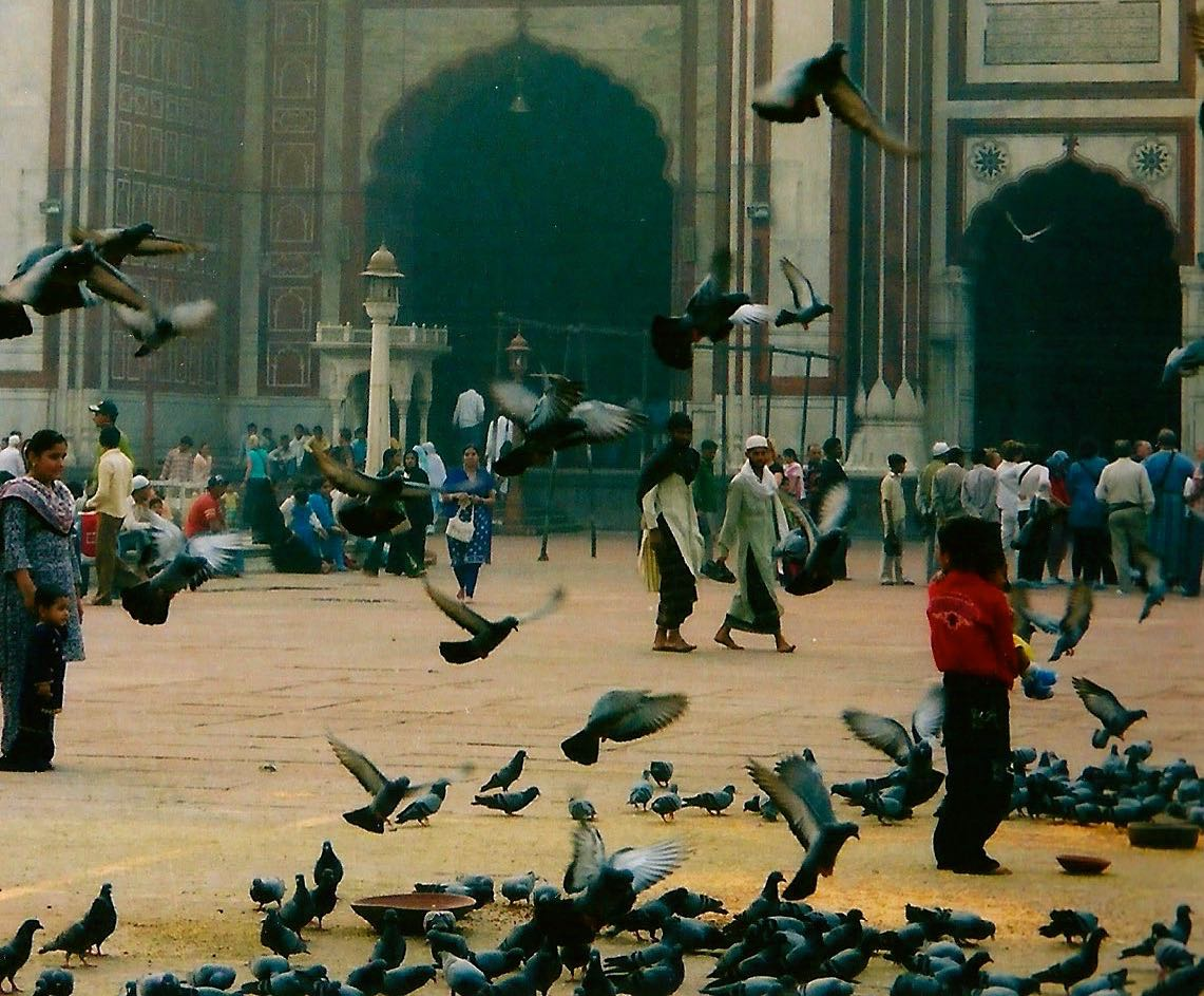 IN THE COURTYARD OF JAMA MASJID, OLD DEHLI