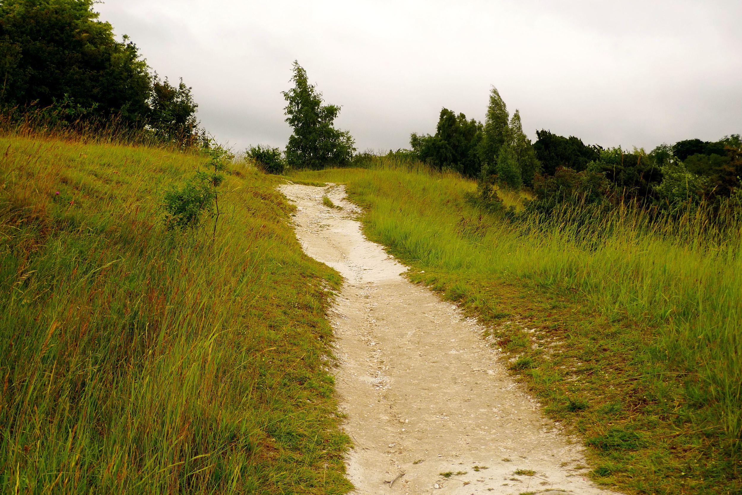 Justabitmoreuphill.jpg