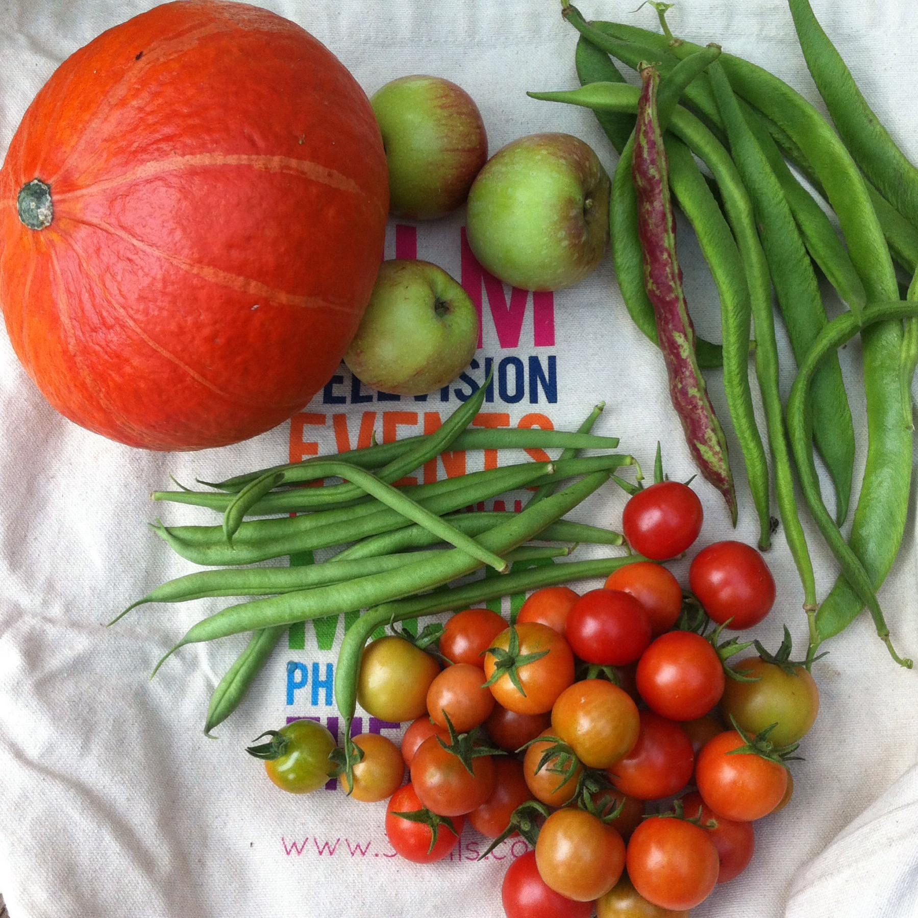 THE HARVEST FROM OUR ALLOTMENT