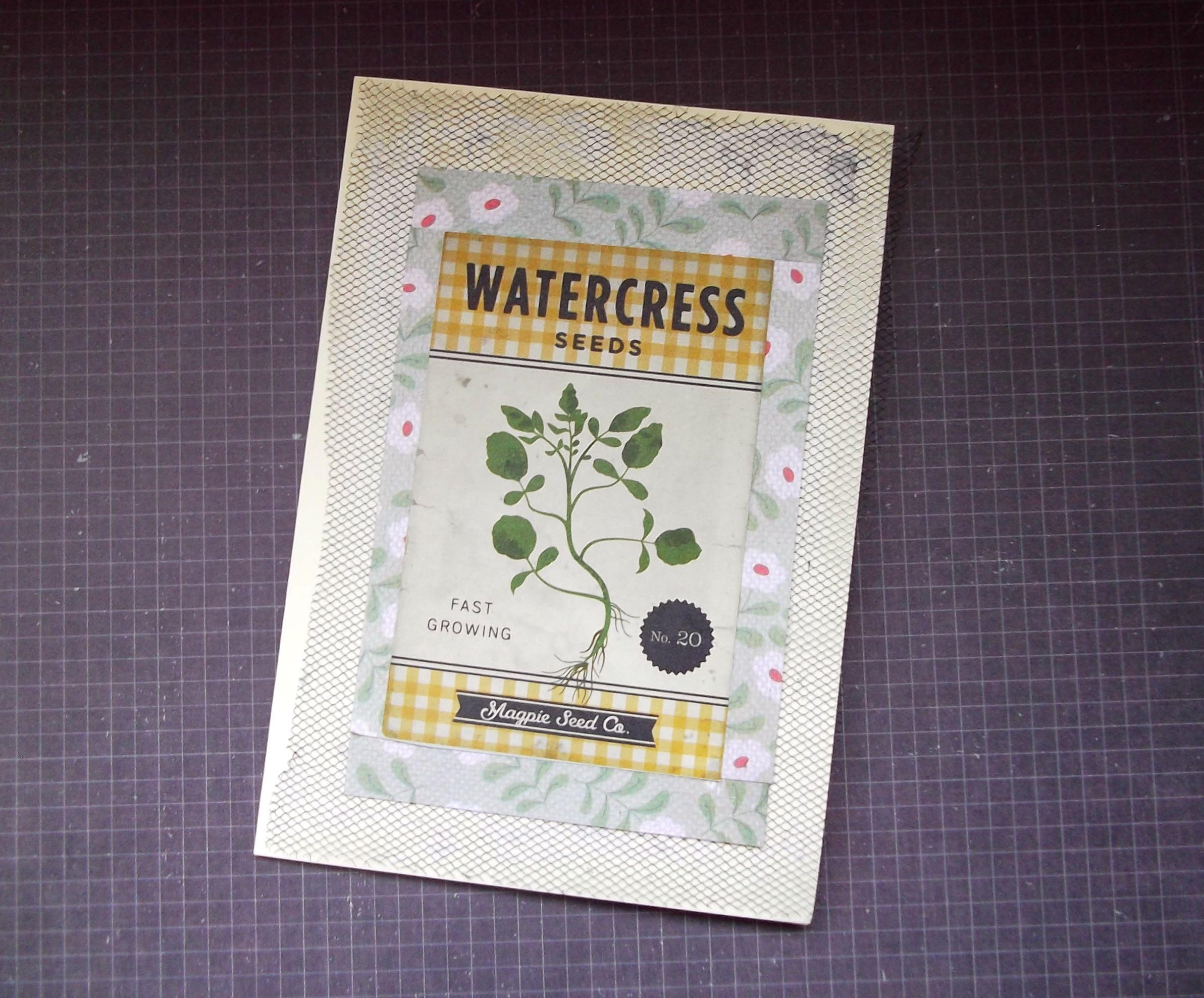 watercress.jpg