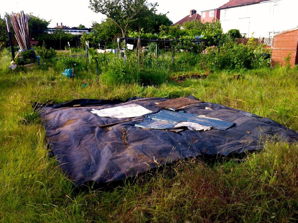 May: Day 1 at our new allotment