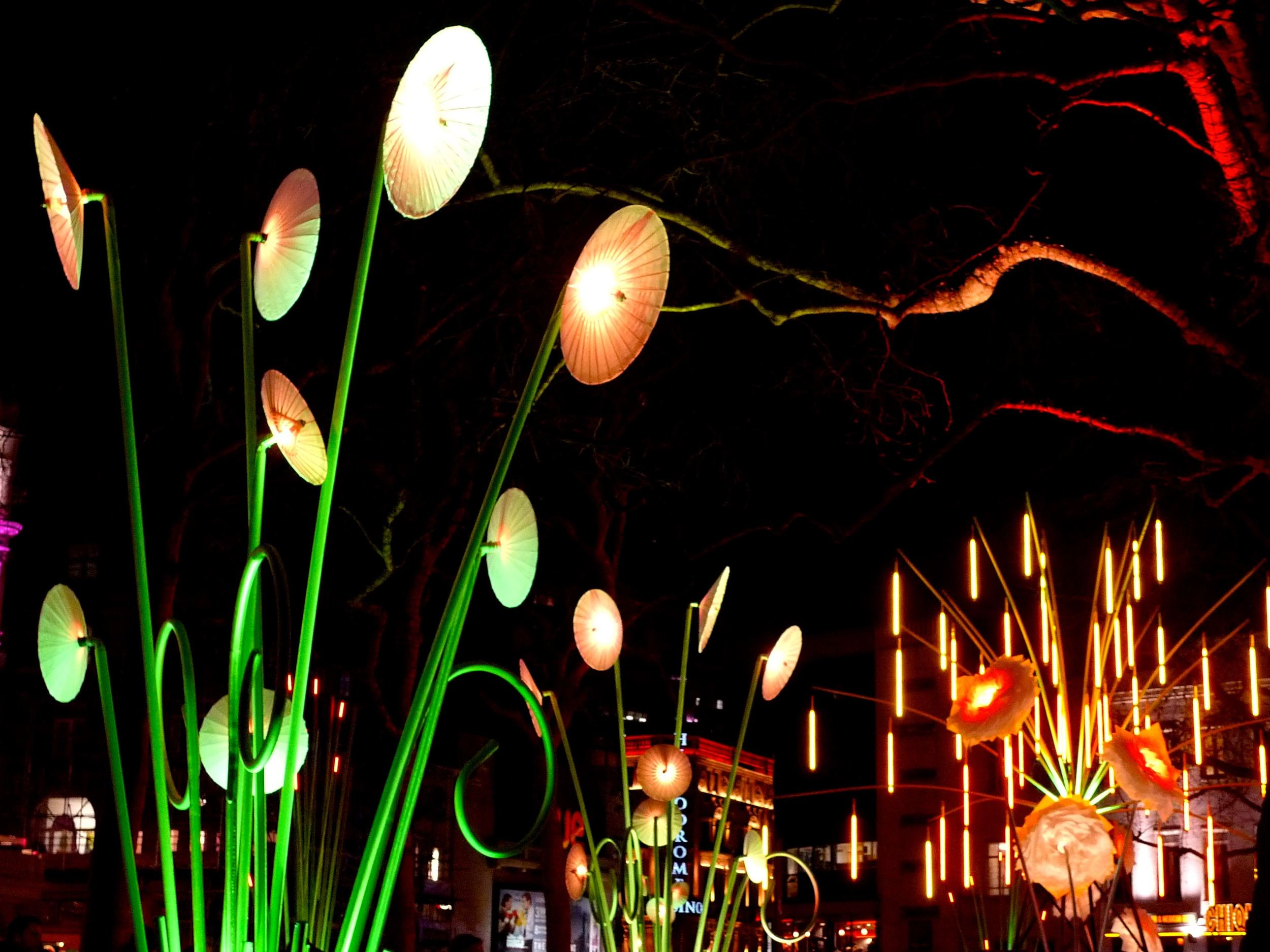 THE GARDEN OF LIGHT, TILT
