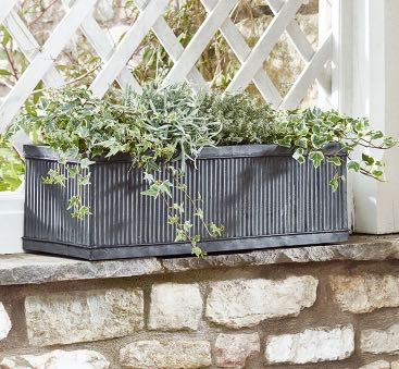 GALVANISED FLUTED TROUGH, PHOTO CREDIT COX & COX