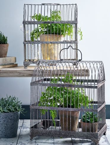 AGED METAL BIRD CAGES, PHOTO CREDIT COX & COX