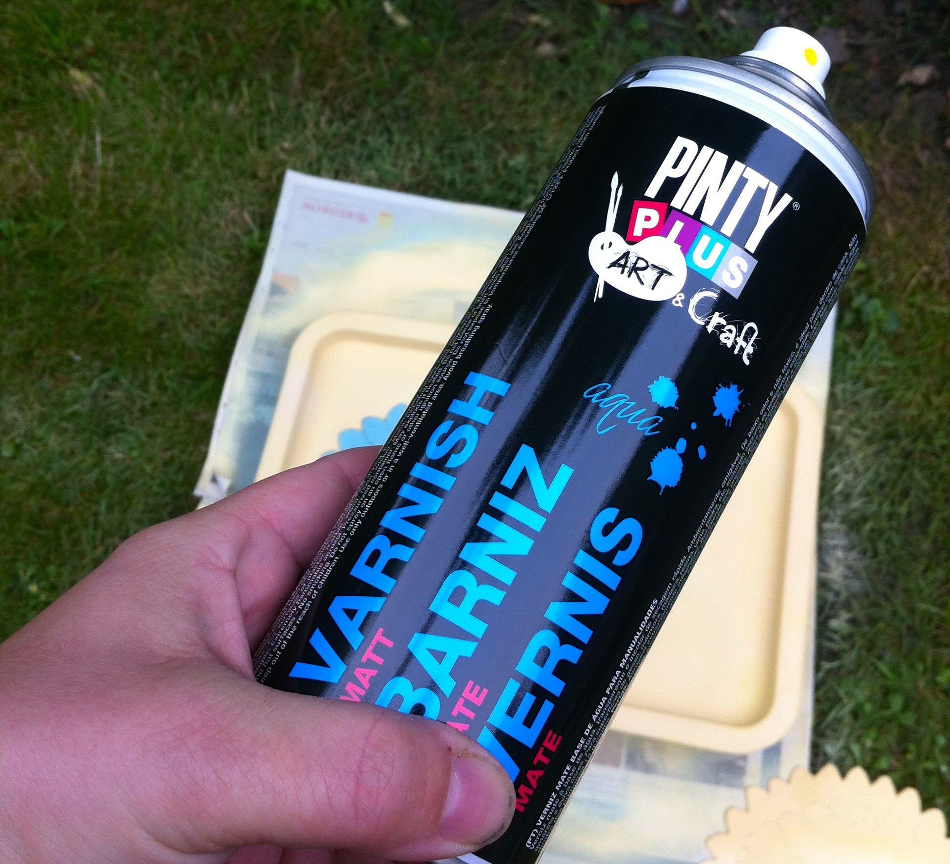 Pinty Plus Matt Varnish Spray