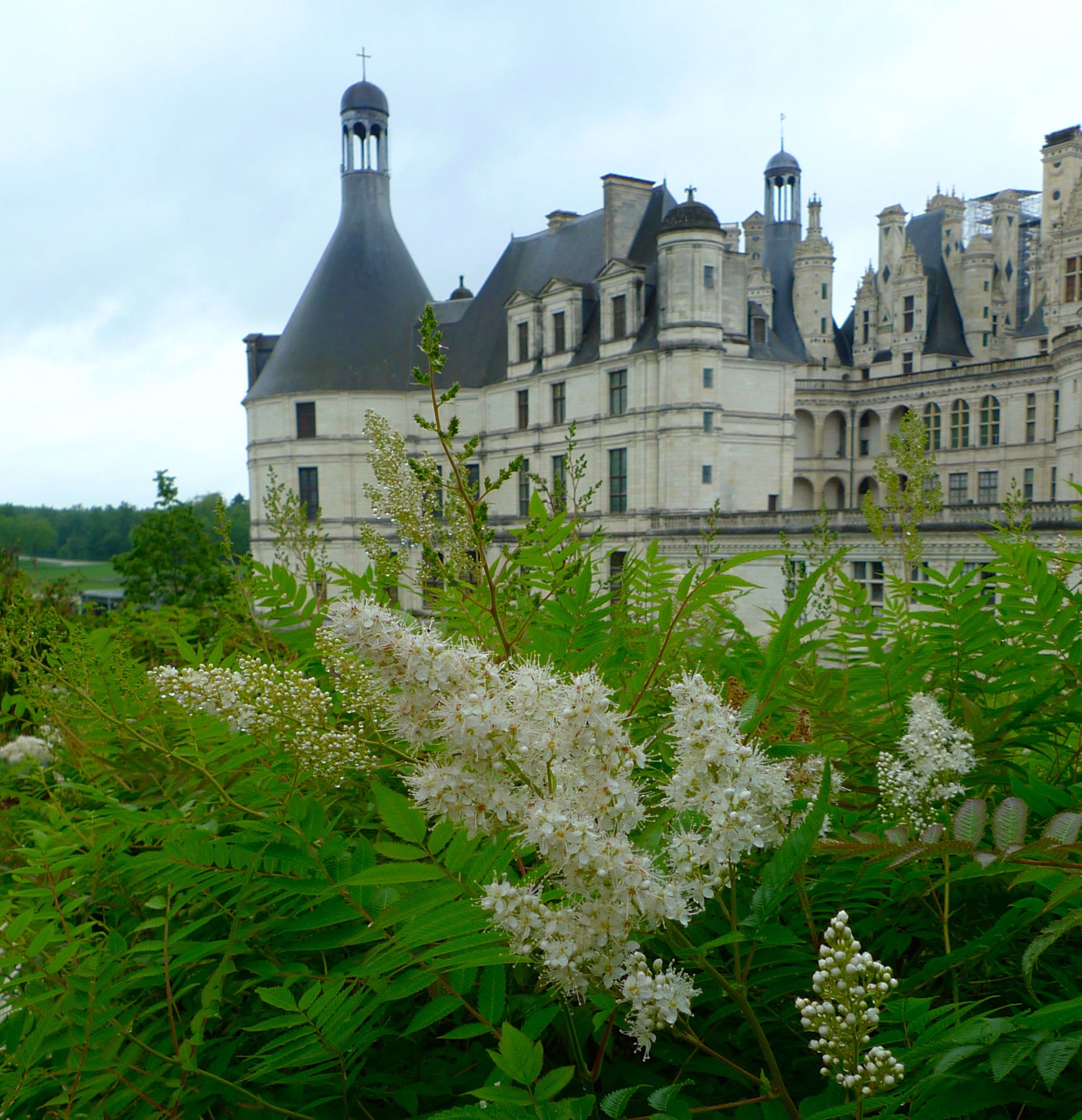THE CHATEAU DE CHAMBORD FROM THE GARDENS
