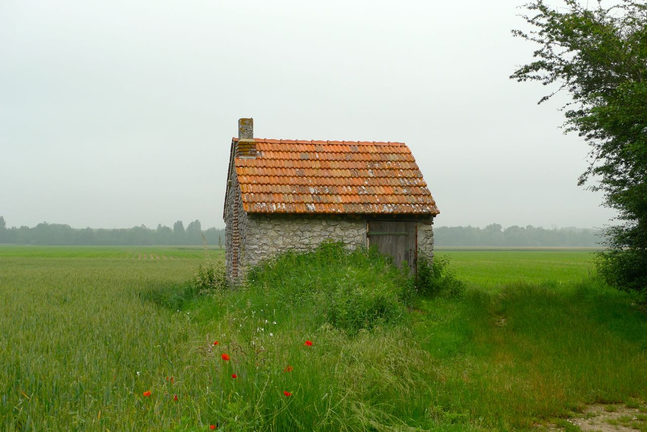 Heading to Chambord by bike from Beaugency past picturesque fields