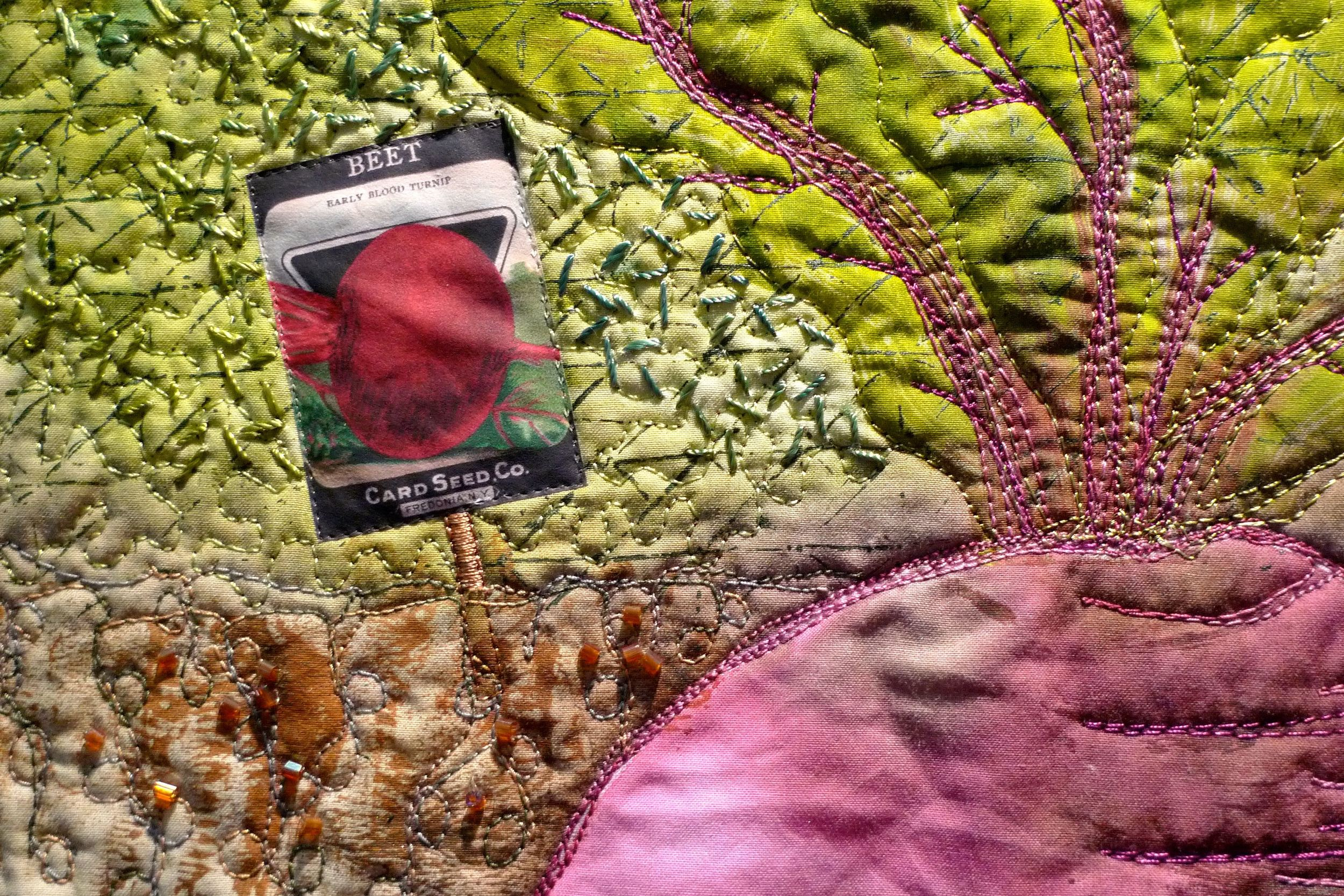 A closer look at the beetroot and the seed packet