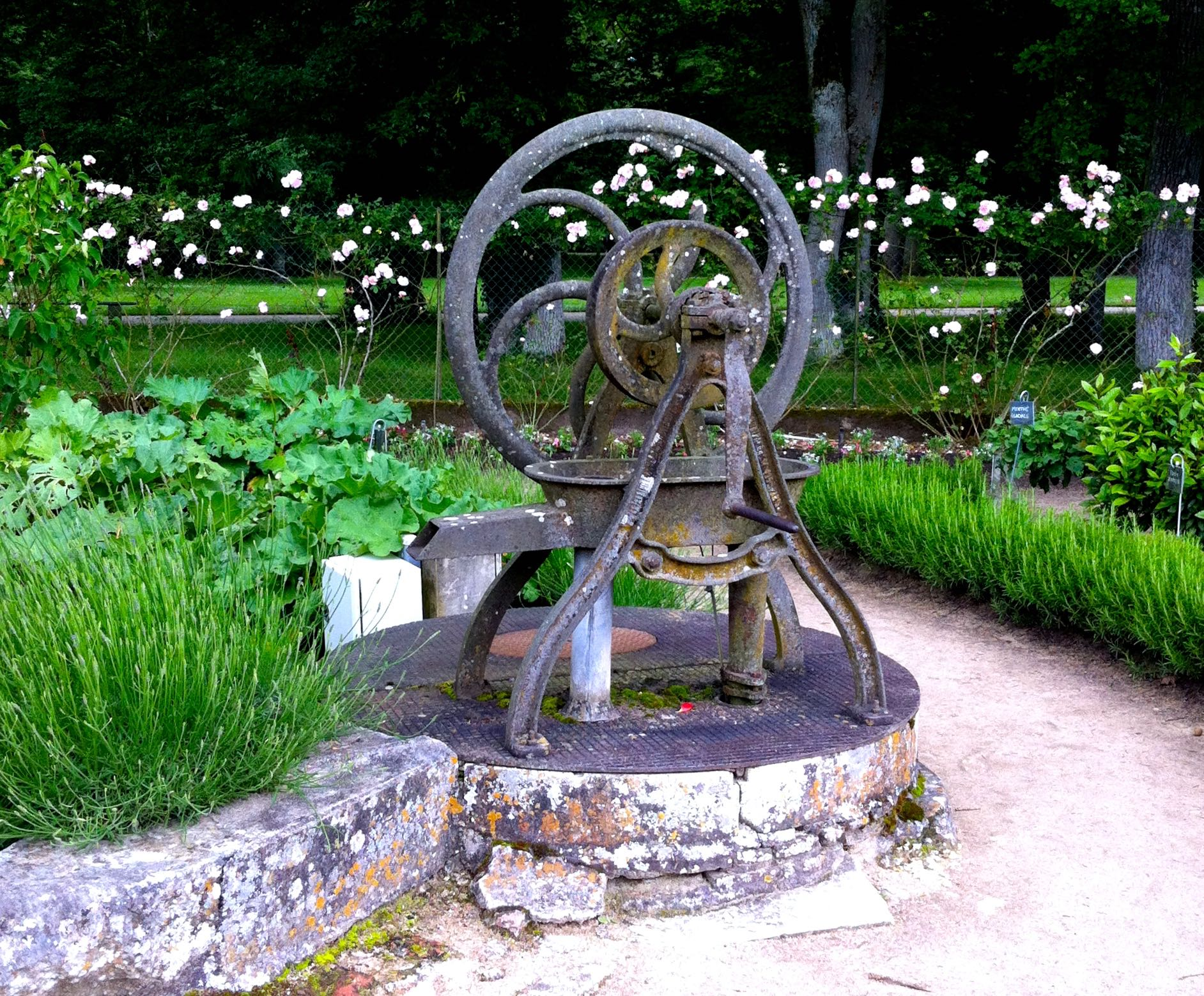 the garden at chateau de chenonceau was interspersed with some intriguing items like this well head