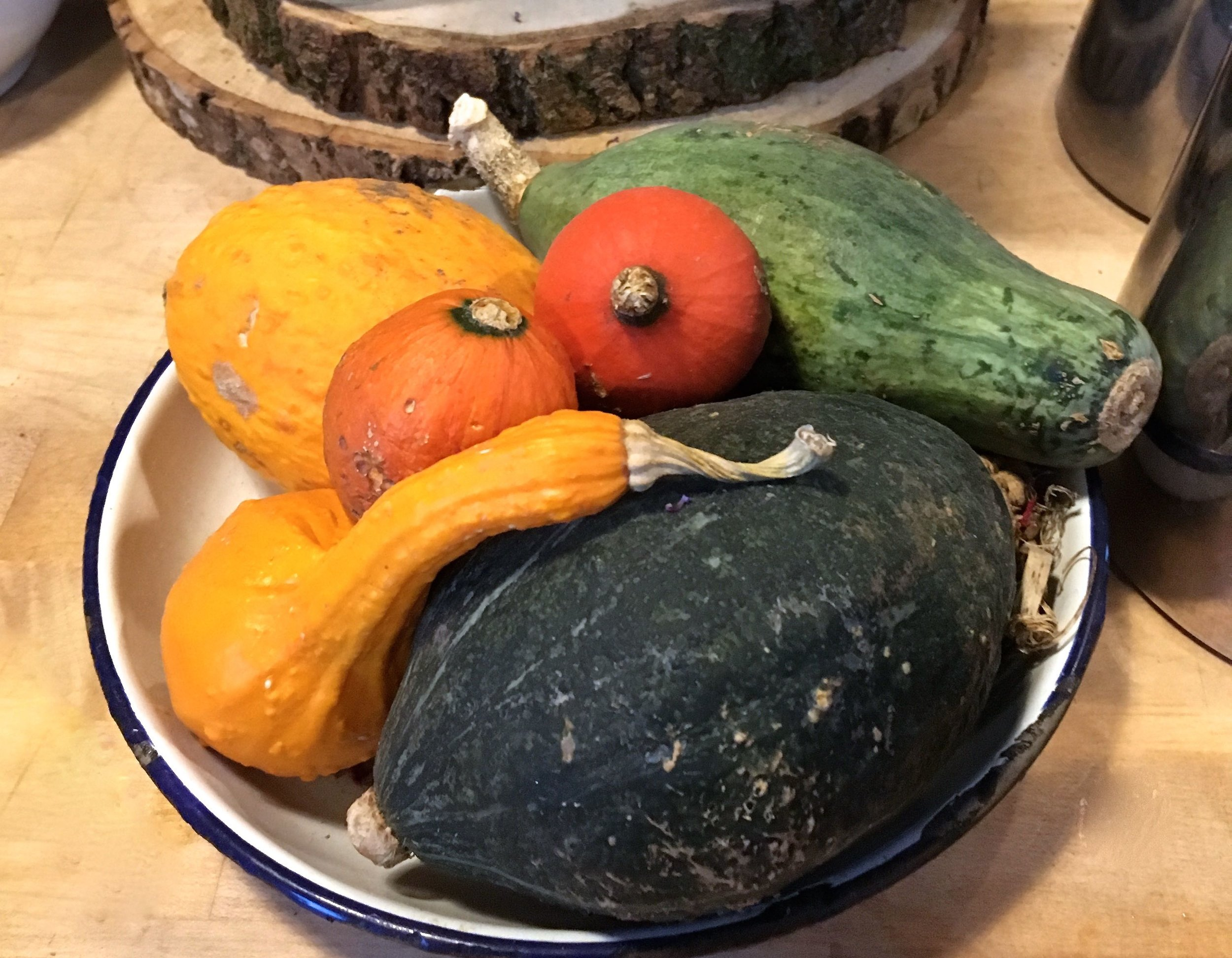 Gourds and squashes decorating the Inside of the barn at River Cottage HQ