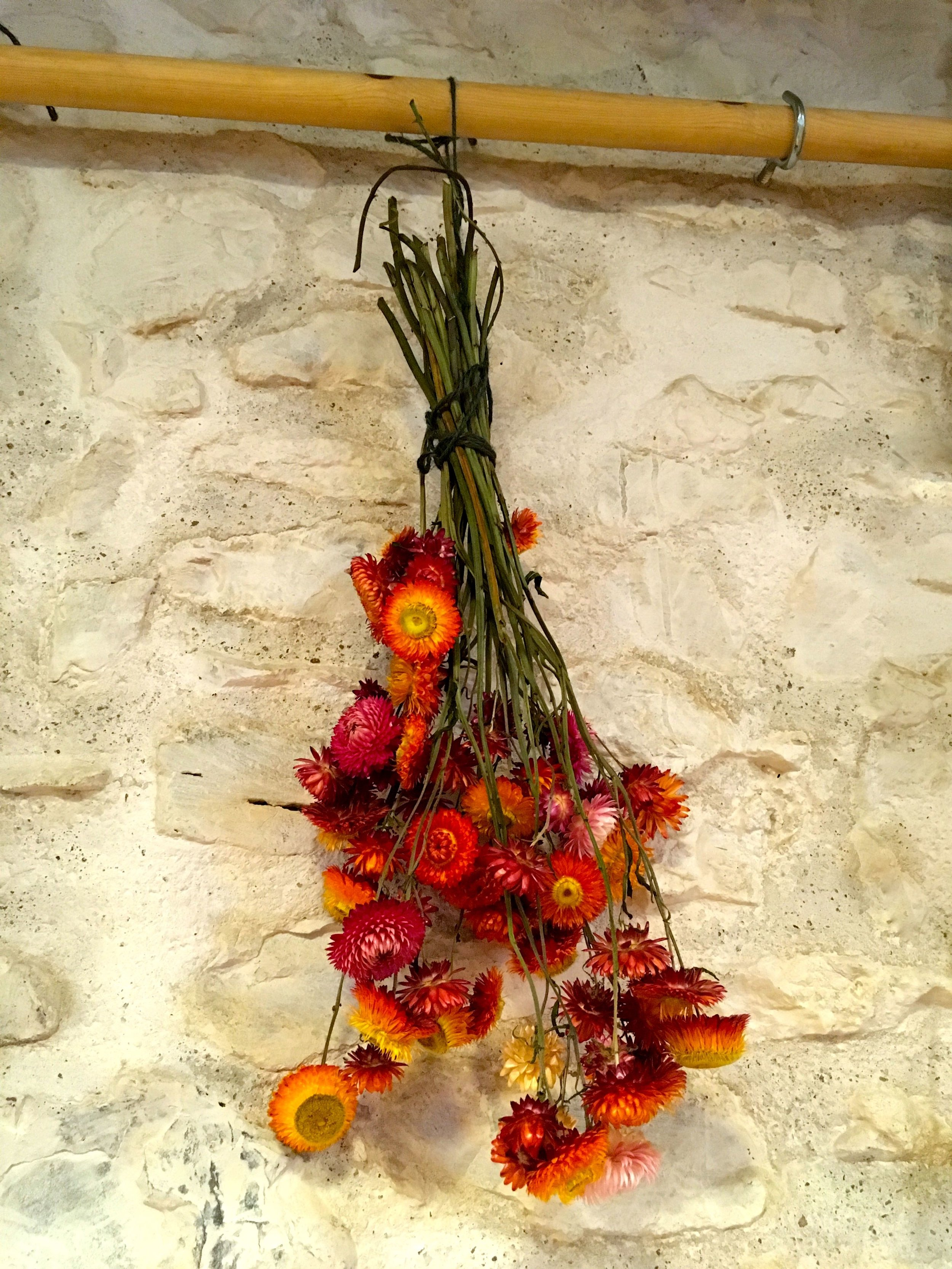 Flowers hanging to dry Inside the barn at River Cottage HQ
