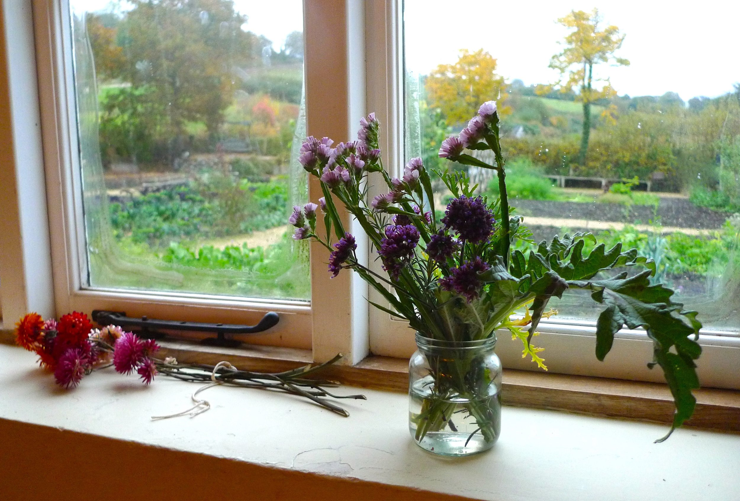 From the kitchen in the farmhouse at River Cottage HQ there's a great view over the garden, but more on that another day
