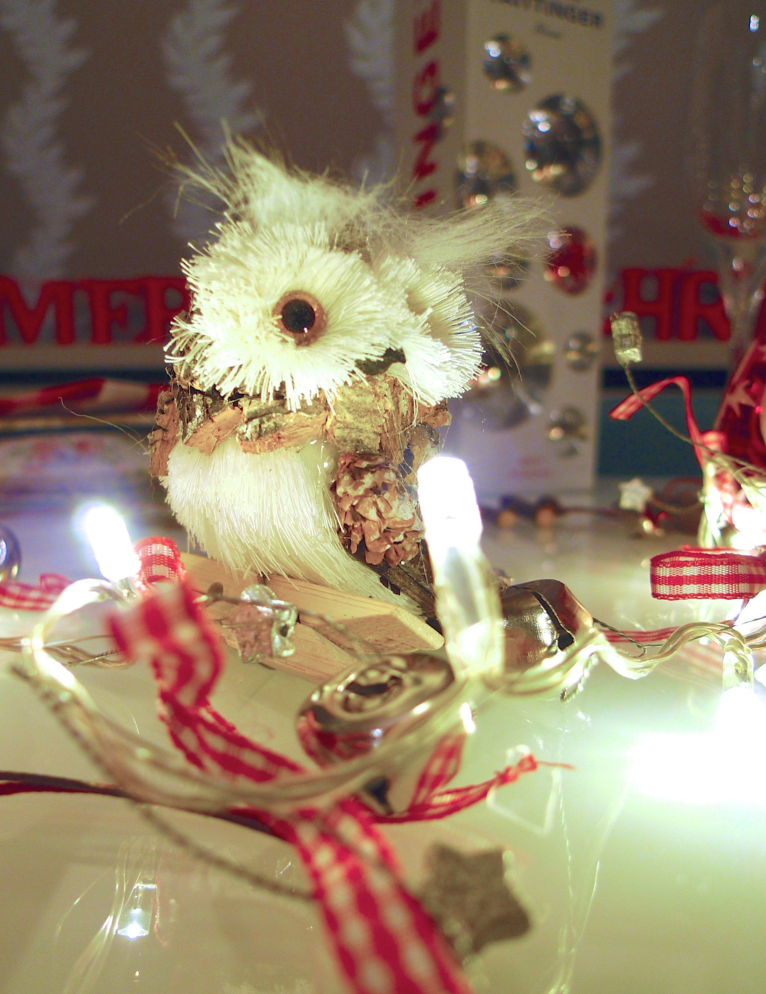 These cute owls from TK Maxx are my favourite decoration so far this year