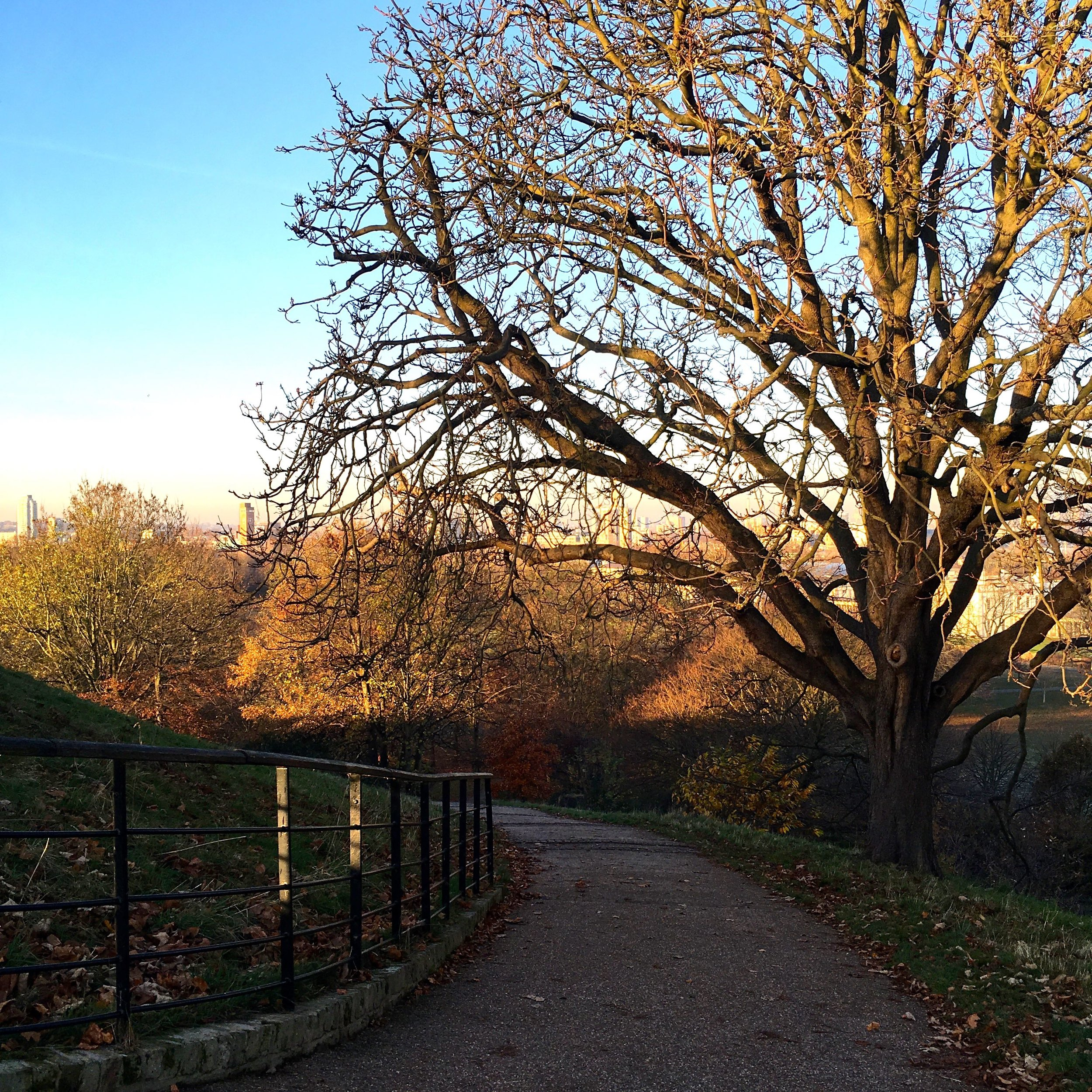Great light and frosty mornings, and heels, possibly not the day to try a new downhill path