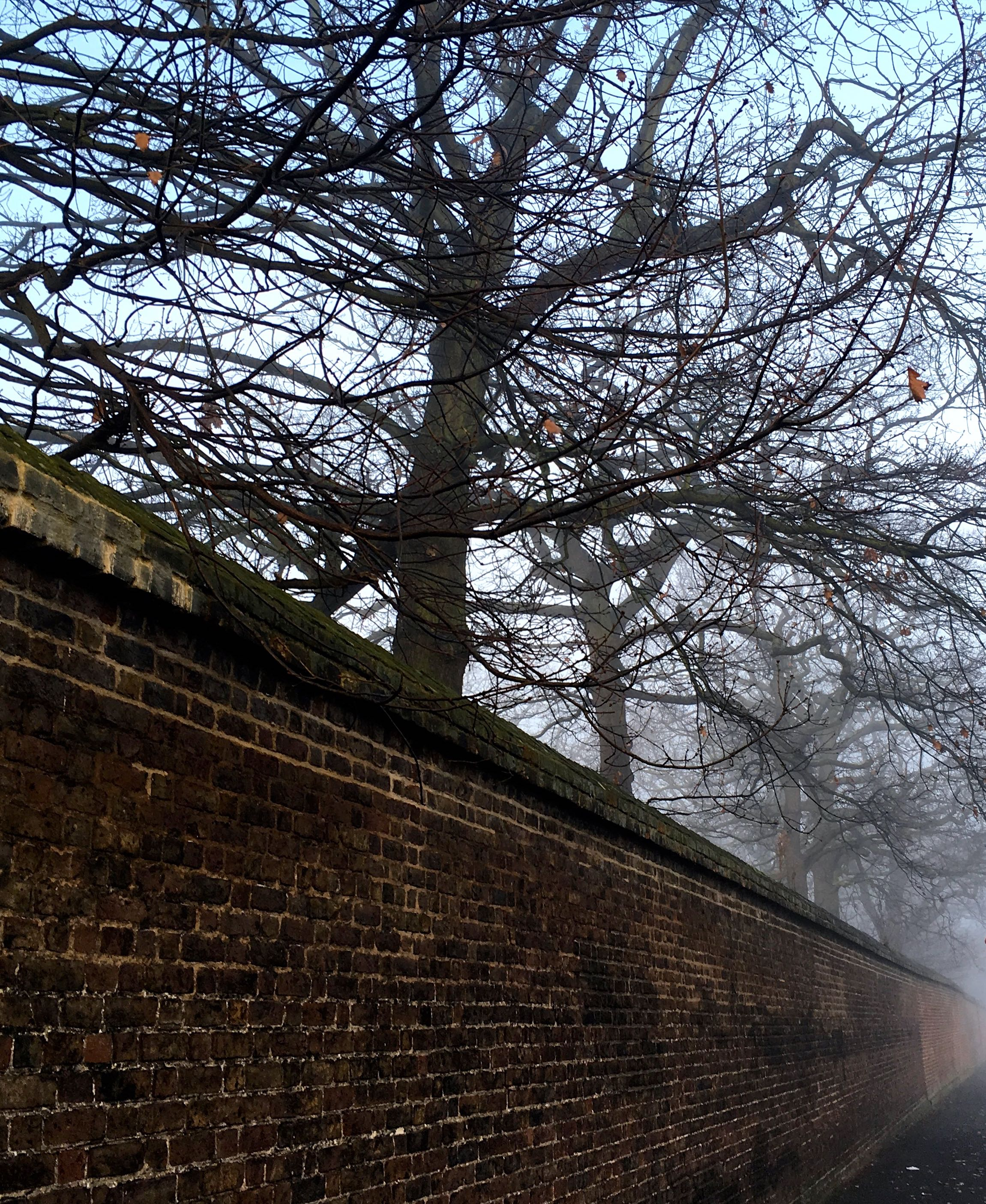 Fog creeping along the perimeter wall of Greenwich Park