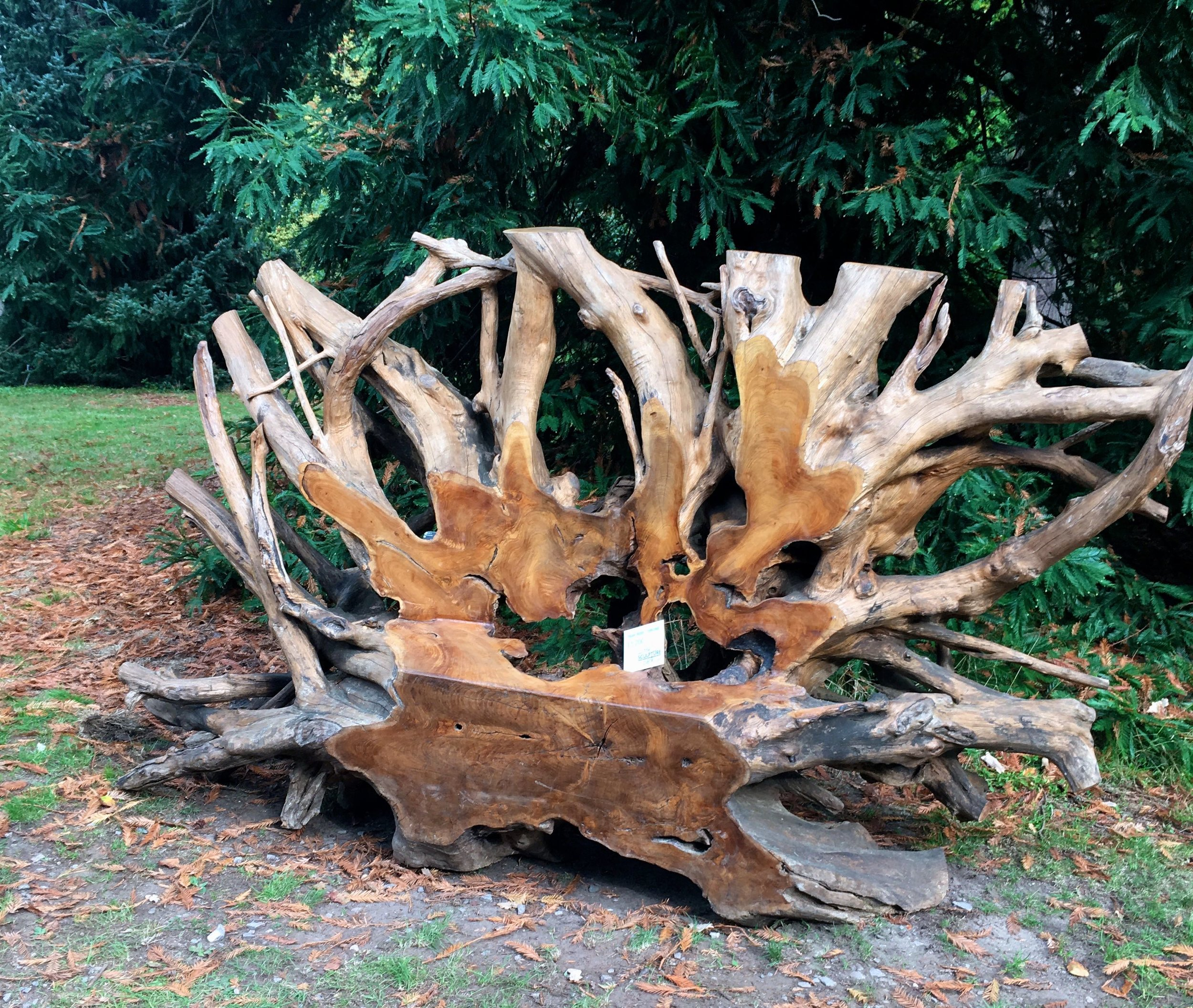 Teak root thrones come in all shapes and sizes (and price ranges too!)