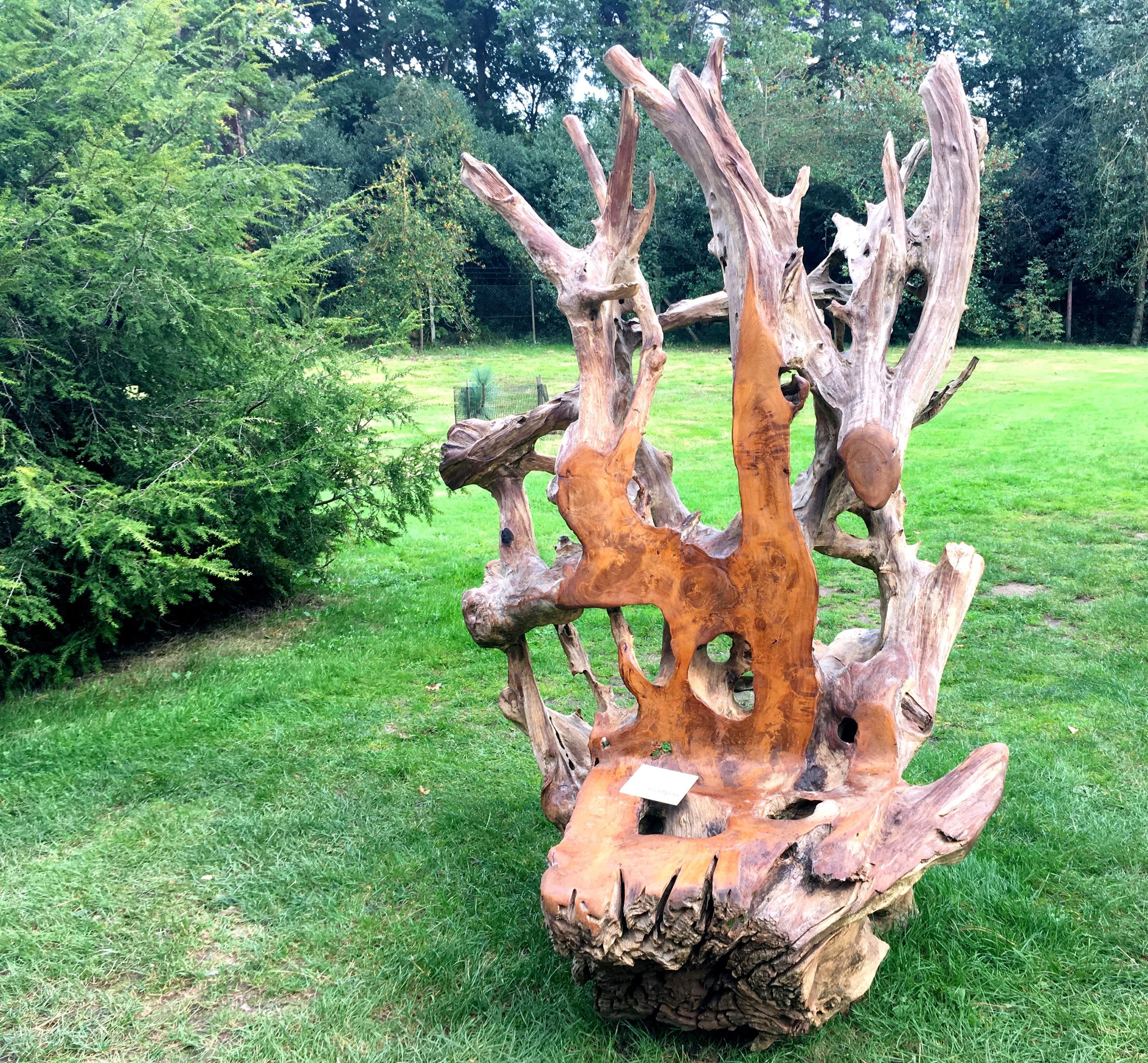 Teak root thrones would make a great seating nook in your garden